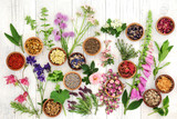 Herbs and Flowers for Herbal Medicine - 207303687