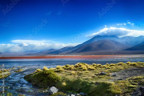 Aluminium Landschappen Laguna Colorada at the Altiplano (Bolivia)