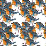 Watercolor seamless pattern. Robin Bird.