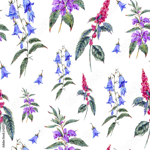 Watercolor summer seamless pattern of medicinal flowers - 207334612