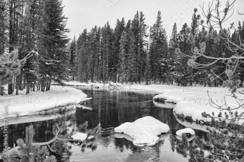 Fotobehang Grijs Yellowstone NP
