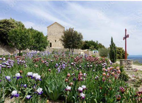 Canvas Blauwe hemel magnifique jardin