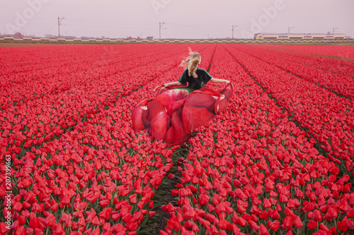 Fotobehang Tulpen The Netherlands, tulip fields