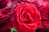 a bouquet of red roses - 207421631