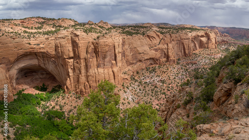 Canvas Zalm Navajo land monument desert southwest USA
