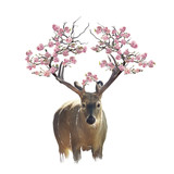 Deer portrait with flowering branches watercolor - 207477029