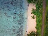 Tropical Beach in Fiji - 207479697