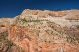Landscape in Zion National Park - 207510083