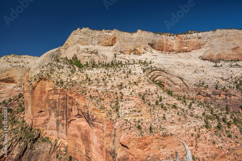 Canvas Zalm Landscape in Zion National Park