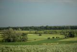 Polski wiosenny krajobraz