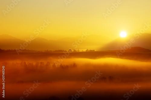 Aluminium Honing A beautiful morning landscape with sunshine and fog.