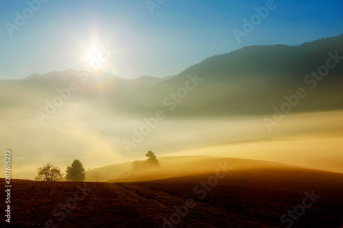 Canvas Honing A beautiful morning landscape with sunshine and fog.