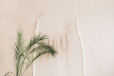 Minimal home interior design. Tropical palm branches and boho decoration at pastel beige wall. Modern studio concept. - 207613807