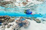 Woman snorkeling - 207616233