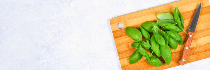 Green fresh home basil, spicy herb on a cutting board with a knife on a gray concrete table. © detry26