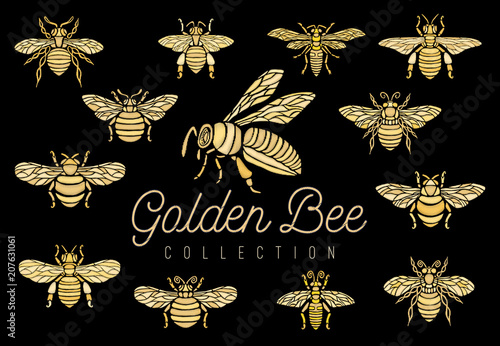 Golden embroidery patch bee crown bumblebee wasp Insect embroidery royal gold set collection Fashion t shirt  Hand drawn vector illustration - 207631061