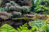 Magnificent suburban park - 207638237