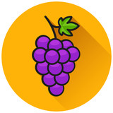 grapes circle flat icon concept