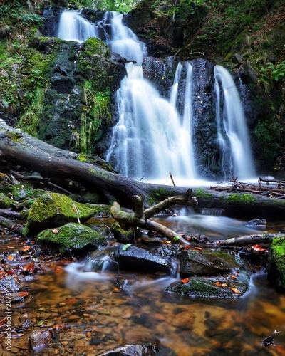 Wasserfall im  Wald in Schweden - 207641278