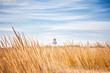 Lighthouse visible above the dune grasses on a beach