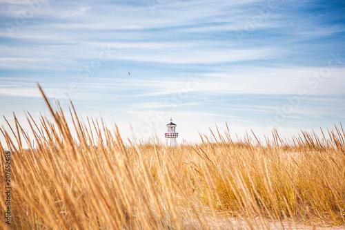 Fotobehang Vuurtoren Lighthouse visible above the dune grasses on a beach