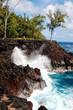 MacKenzie Park near Hilo, Hawaii - 207666655