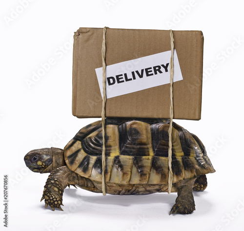 Aluminium Schildpad El envio lento del paquete.
