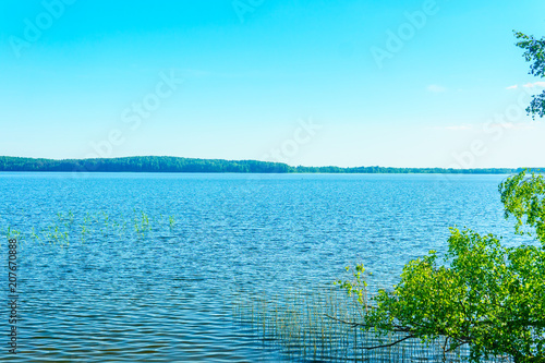 Fotobehang Turkoois Lakes in the forests of Belarus