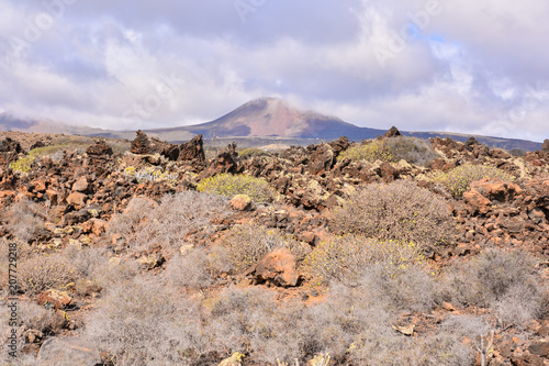 Fotobehang Donkergrijs Landscape in Tropical Volcanic Canary Islands Spain