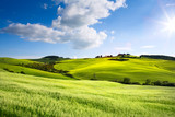 Italy countryside landscape with Tuscany rolling hills ; sunset over the farm land - 207736232