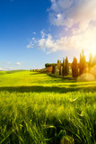 village in tuscany; Italy countryside landscape with Tuscany rolling hills ; sunset over the farm land - 207736245