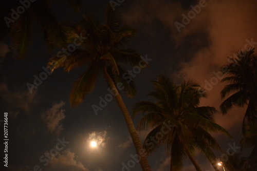 Fotobehang Strand sky, sunset, sunrise, clouds, clouds, red, crimson, moon, palm trees, lantern, city, height, reflection, reflection,