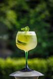 Fresh summer cold elderflower lemonade