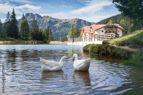 lake at the Dolomites mountains