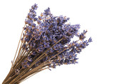 dry lavender isolated - 207777483