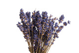 dry lavender isolated - 207777627