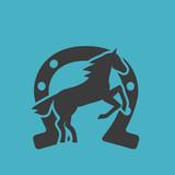 Running horse black silhouette - 207799426
