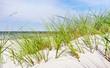 Leinwanddruck Bild - Ostsee Düne - Meer