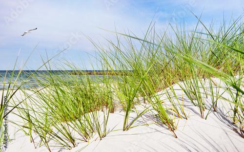 Leinwanddruck Bild Ostsee Düne - Meer