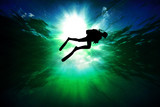 Scuba diver silhouette - 207817254
