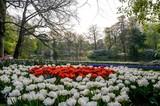 Parc Floral de Keukenhof aux Pays-Bas