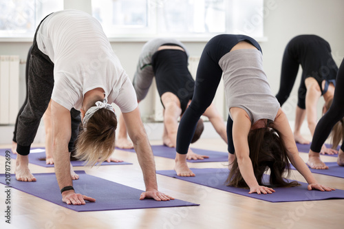 Leinwanddruck Bild Group of young sporty people practicing yoga lesson, doing Down facing dog exercise, adho mukha svanasana pose, working out, indoor session close up, students training in club. Wellbeing lifestyle