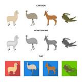 lama, ostrich emu, young antelope, animal crocodile. Wild animal, bird, reptile set collection icons in cartoon,flat,monochrome style vector symbol stock illustration web. - 207874688