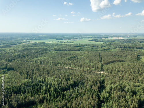 Fotobehang Khaki drone image. gravel road surrounded by pine forest from above