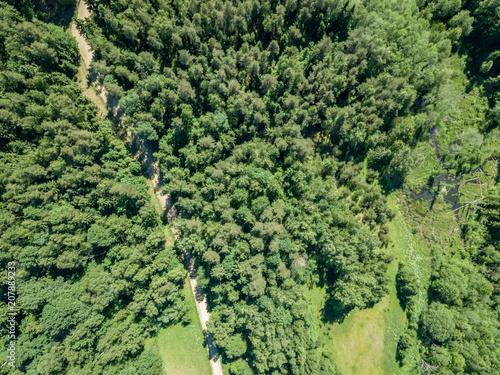 obraz drone. droga żwirowa otoczona lasem sosnowym od góry