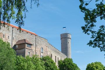 Castle and Tower, Tallinn