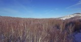 winter hilly landscape in ural mountains / russia, Bashkortostan - aerial view drone camera - 207901658