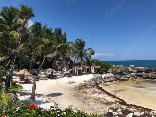 Plexiglas Tropical strand beach