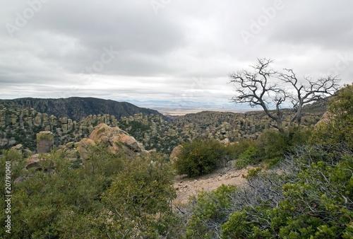 Aluminium Arizona Une vue du parc Chiricahua, un jour de mauvais temps - Arizona - Etats-Unis
