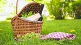 Wicker picnic basket with cheese and wine on red checkered table cloth on grass in park - 207940838